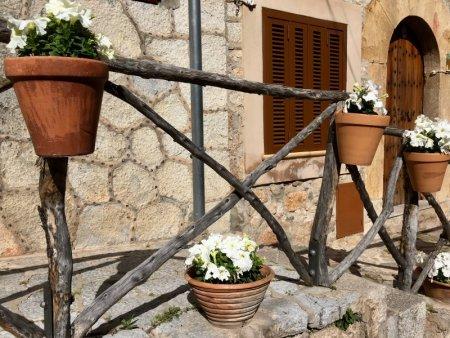 Flower pots in Valldemossa, Mallorca