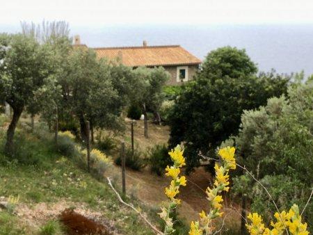 Hike from Port de Valldemossa to S'Estaca