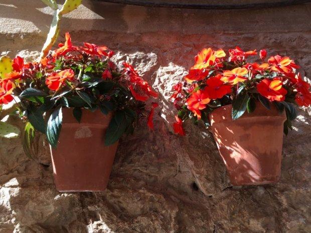 Valldemossa flower pots