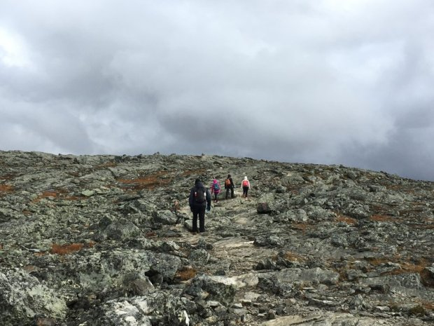Hike to Saana fell: reaching the top