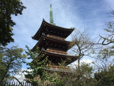Pagoda from Tosho-gu Shrine