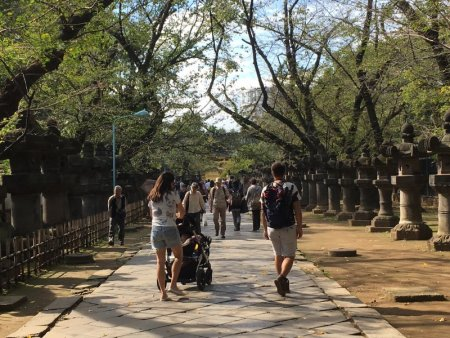 Walkway to Tosho-gu Shrine