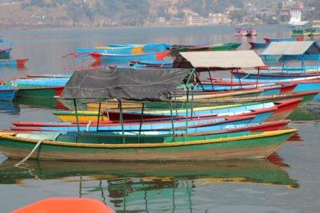 Lake Phewa boats, Nepal