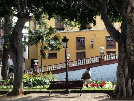 Icod de los Vinos center, Tenerife
