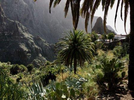 Mountain village of Masca, Tenerife