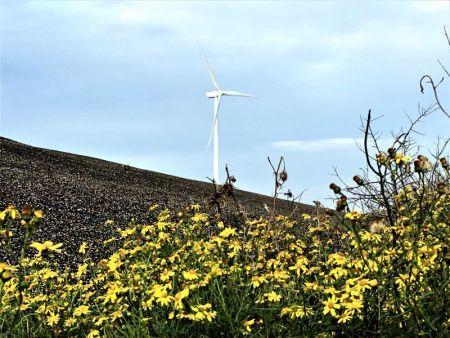 River cruising through Belgium and the Netherlands: Oosterschelde windmill