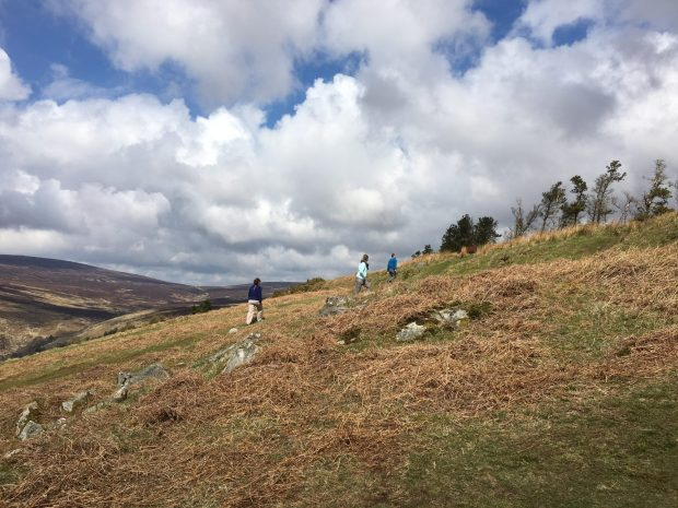 Hiking in Wicklow Mountains, Ireland