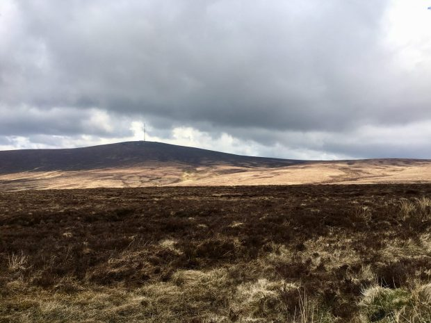Wicklow Mountains in spring
