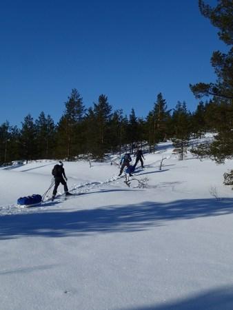 Ski tour in Lapland, skiing uphill in Sudenpesä