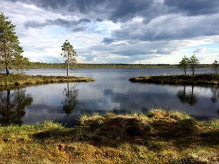 Ostrobotnia road trip: Kauhaneva-Pohjankangas marshland