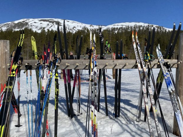 Arctic Lapland spring: skis outside a wilderness cafe