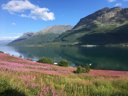 Norway by motorhome: Lyngenfjord
