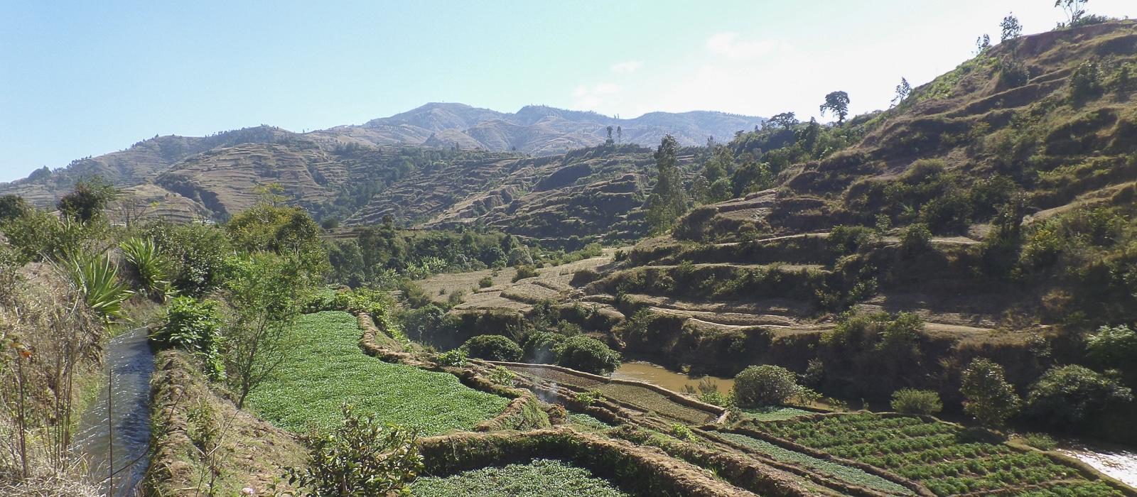 img-diapo-entete - Madagascar-1600x700-12.jpg