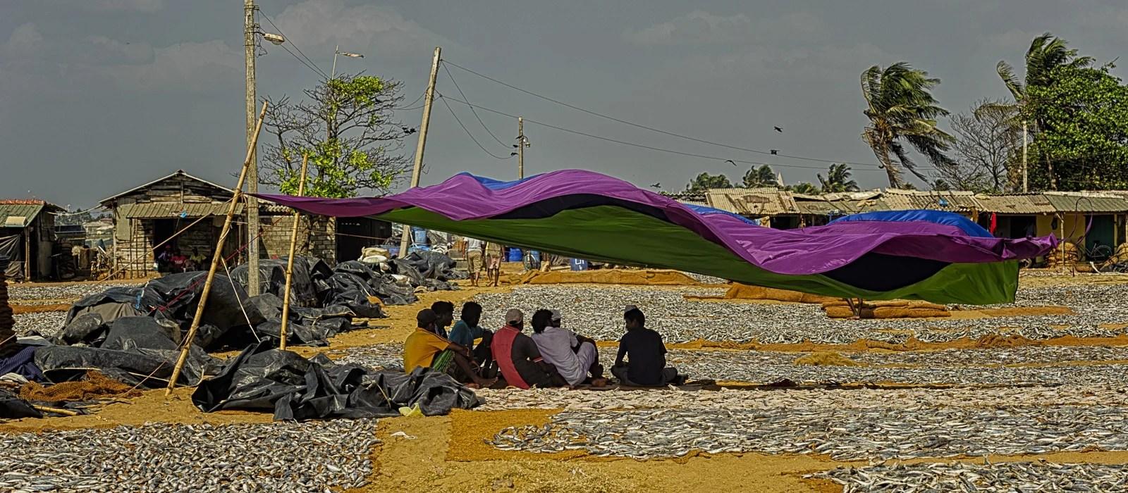 img-diapo-entete - Sri-Lanka-1600x700-11.jpg