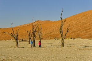 img-diapo-tab - Namibie-1600x900-8-1.jpg