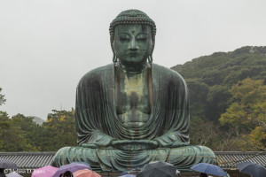 Buddha and Umbrellas