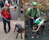 9 Geeky Halloween Costumes for Man and Beast | The Dog ...