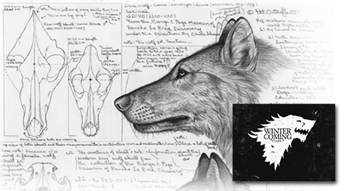 direwolves were real and