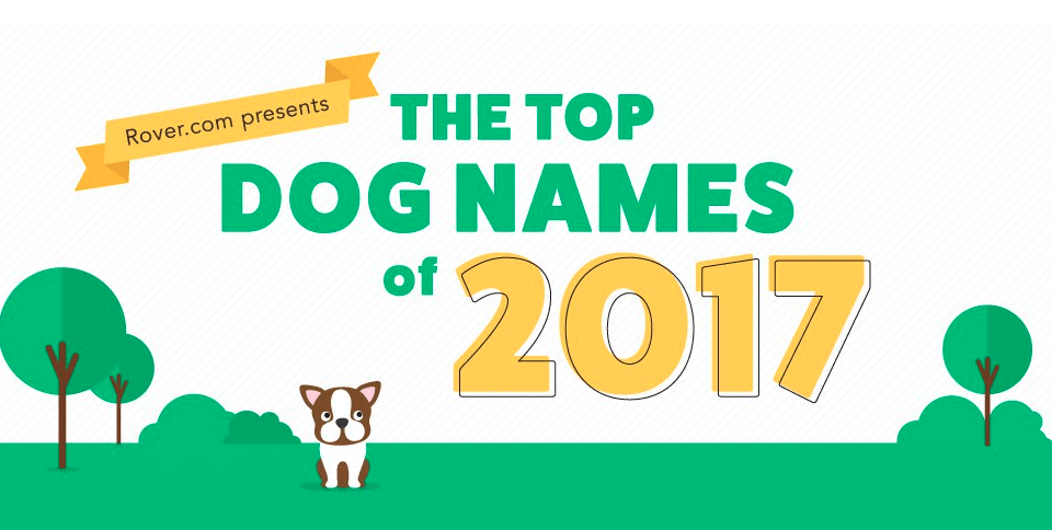 top dog names top