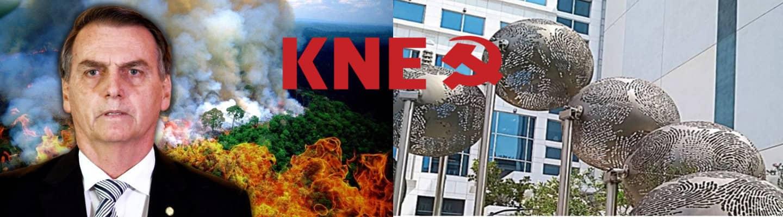 Διαμαρτυρία στην πρεσβεία της Βραζιλίας για την καταστροφή στον Αμαζόνιο