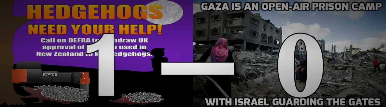 Σκαντζόχοιροι - Παλαιστίνιοι σημειώσατε «1»