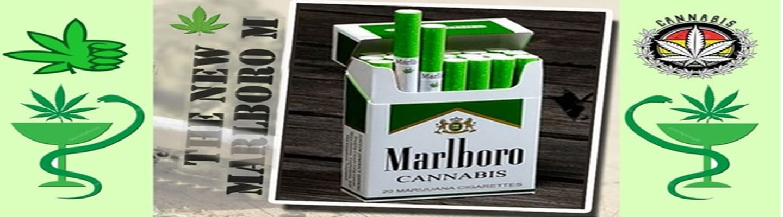 Στον κόσμο του «πράσινου» Marlboro