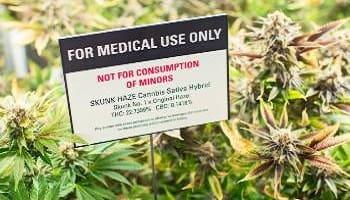 Σχετικά με την φαρμακευτική χρήση της κάνναβης - Μέρος 1ο