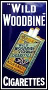 Woodbine Cigarette Advertising