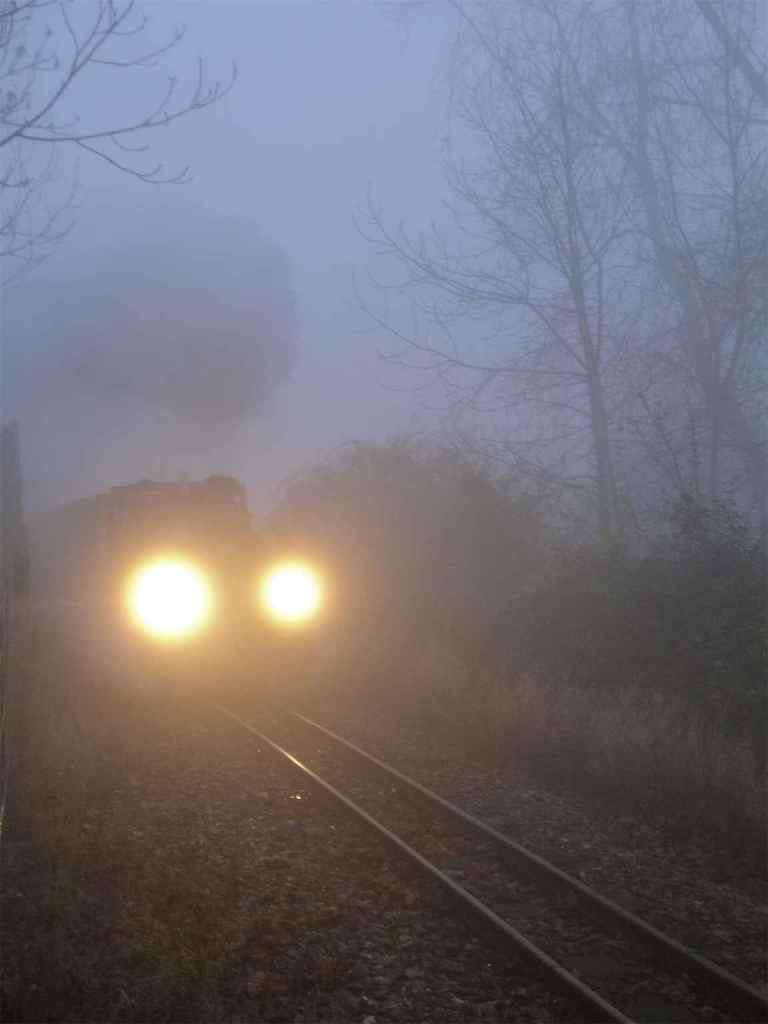 Narrow Gauge Railway in the Mist