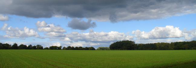 Norfolk Landscape UK