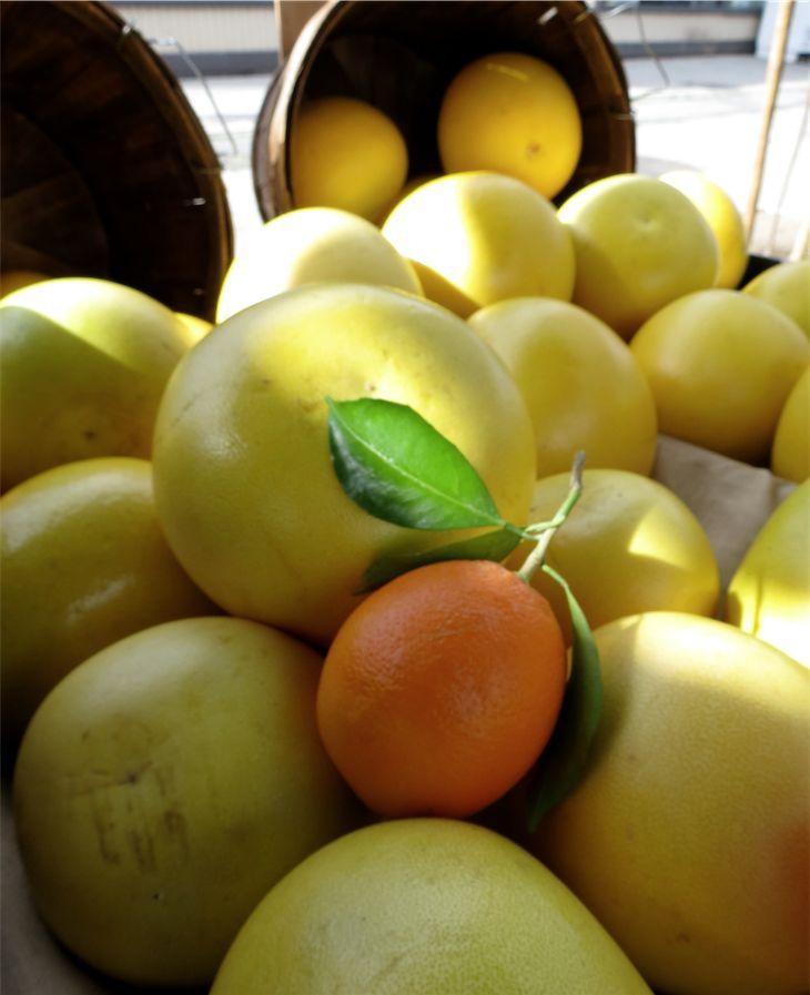 Mar Vista Market Los Angeles California Citrus Stall