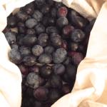 Bag of Black Olives in Bodrum Turkey