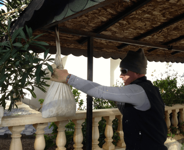 Hanging the black olives out to cure Bodrum Turkey