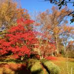 Montclair in autumn