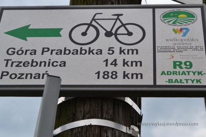 od Wrocławia trzymamy się szlaku R9