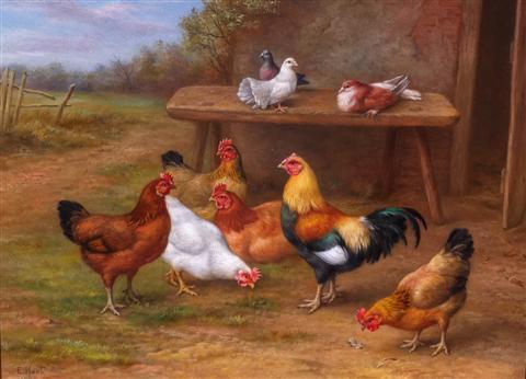 Animal Print Wallpaper Uk View Edgar Hunt Farmyard Friends At Rowles Fine Art