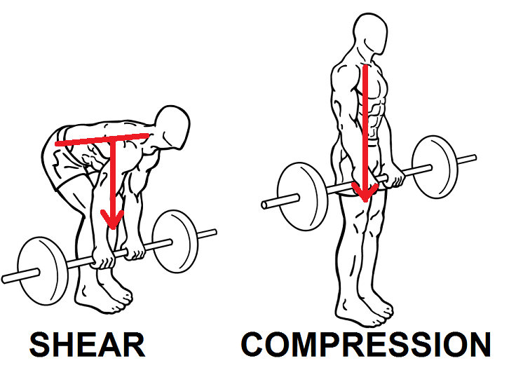 Strength Coach Roundtable #6: Deadlifting for Rowers