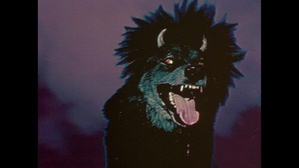 Devil Dog: The Hound of Hell - Terrifying Dog Photos