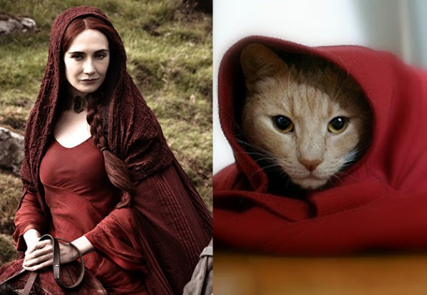 Melisandre - Game of Thrones Characters as Cats