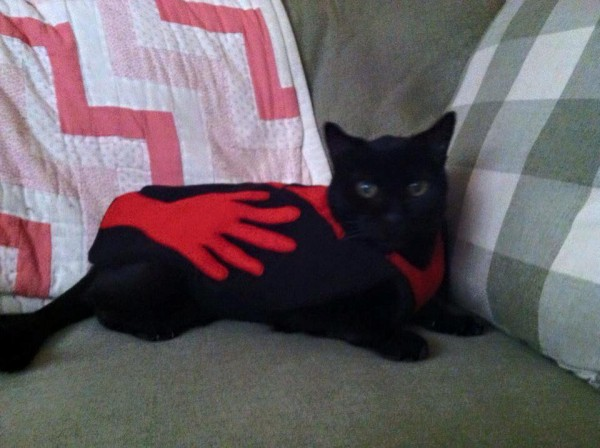 Cat in Manos Costume - Mystery Science Theater 3000 Cosplay