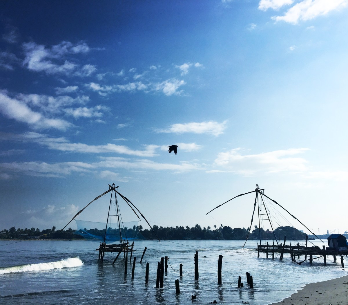 Road Tripping Through South India Part 2: Wayanad To Fort Kochi Top 60 Photos