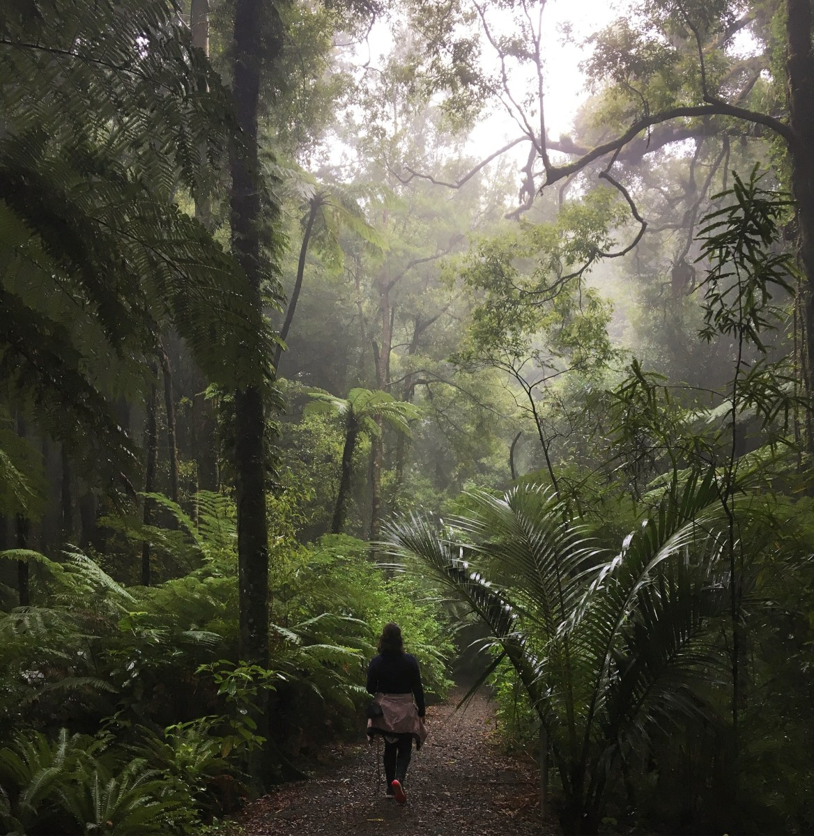 New Zealand's Slice Of Jurassic Park