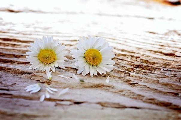 片思いの恋愛がうまくいかないときの心の習慣の変え方