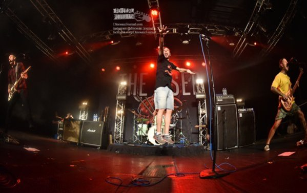 The Used 5