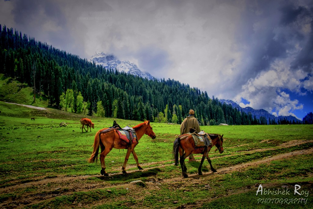 Abhishek Roy Photography, Sonmarg
