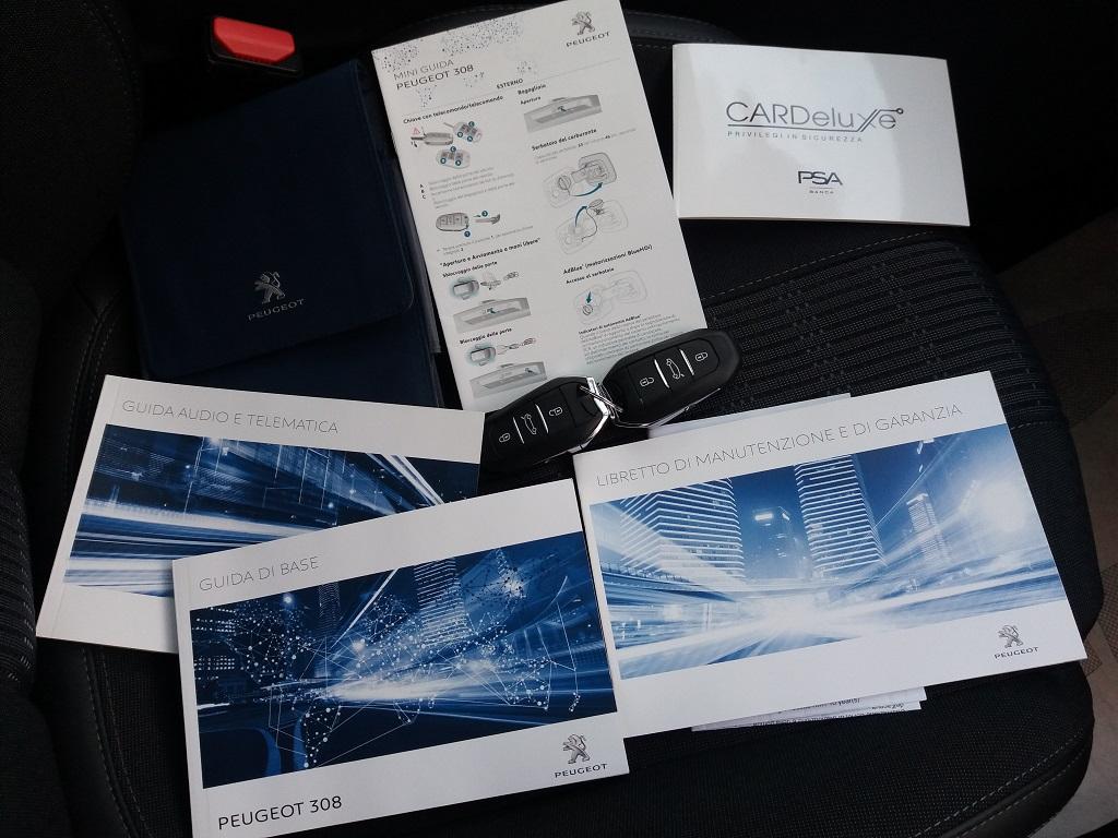 Peugeot 308 BlueHDi 120 S&S Allure (52)