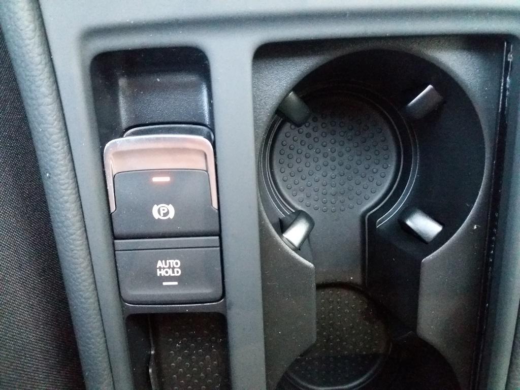 Volkswagen Golf 1.6 TDI Executive 115 cv (39)