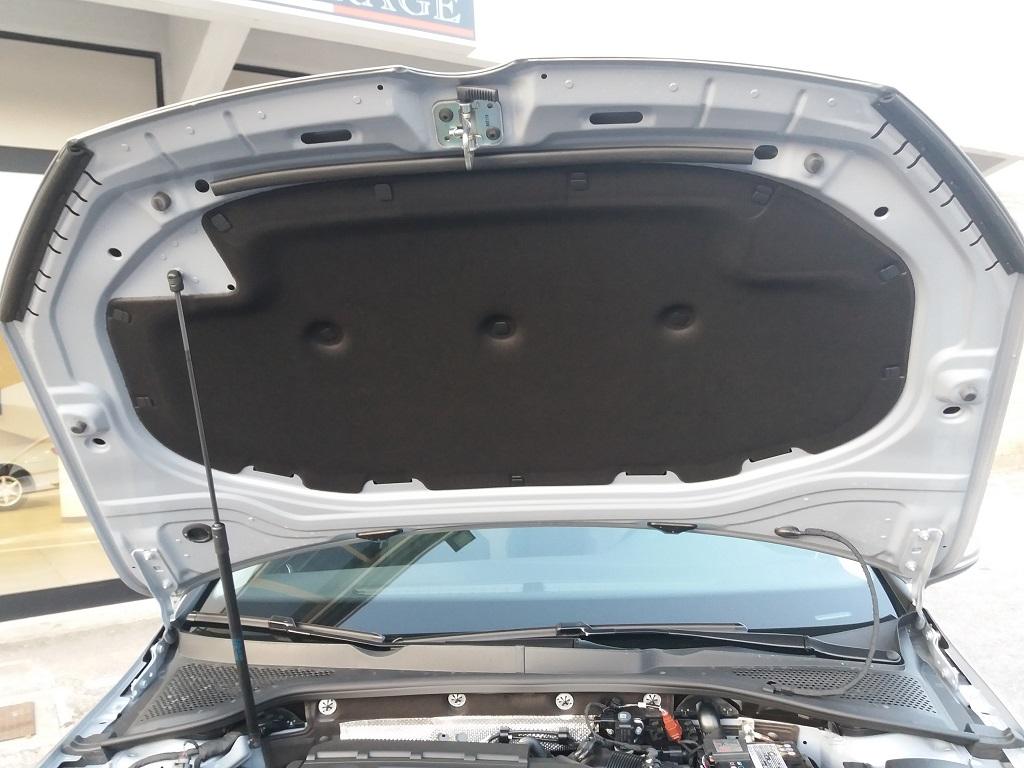 Volkswagen Golf 1.6 TDI Executive 115 cv (46)