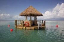 Coco Cay Royal Caribbean Floating Bar