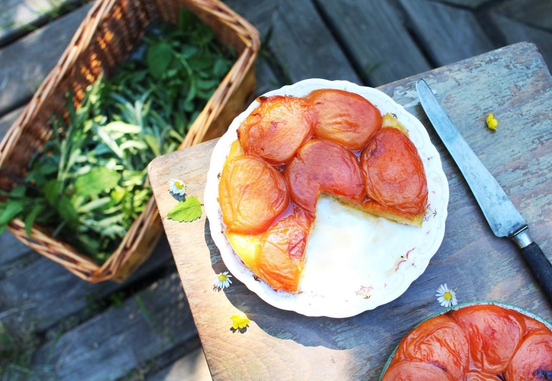 recette facile tarte tatin abricot royal chill blog cuisine